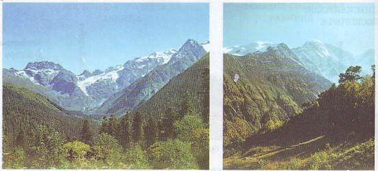 Самые длинные горы страны — Уральские (2100 км). Самые высокие — Кавказские.