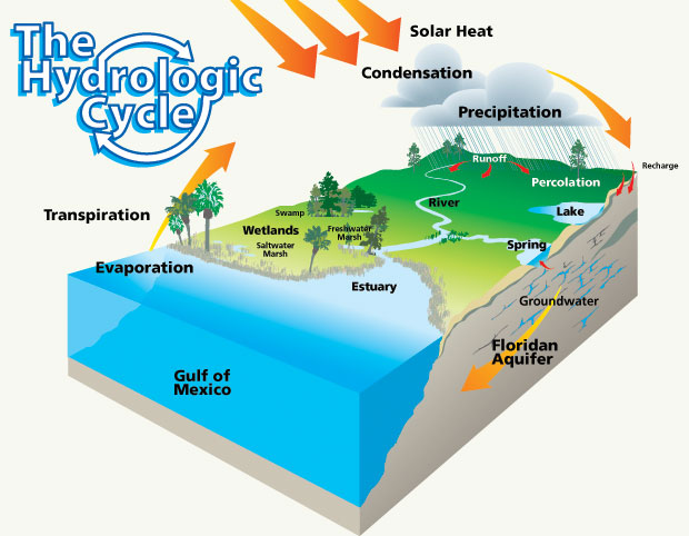The Water Cycle Гипермаркет знаний