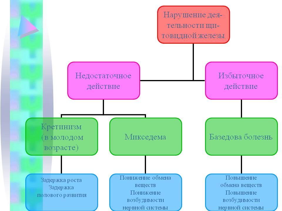 Железы Бартолиниевые
