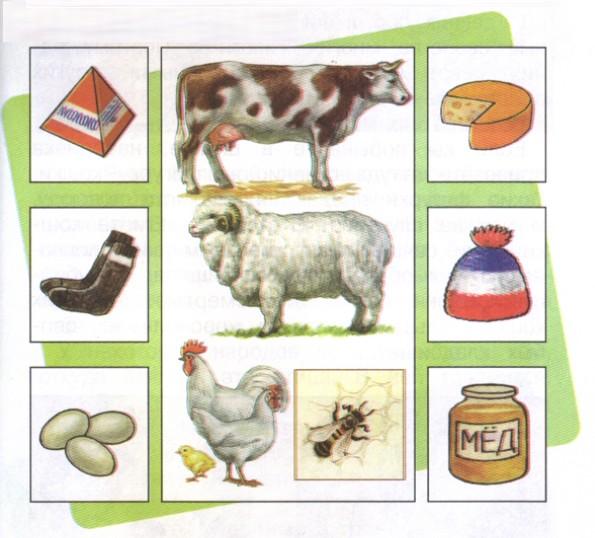 домашние животные картинки для детей 2. домашние животные картинки для