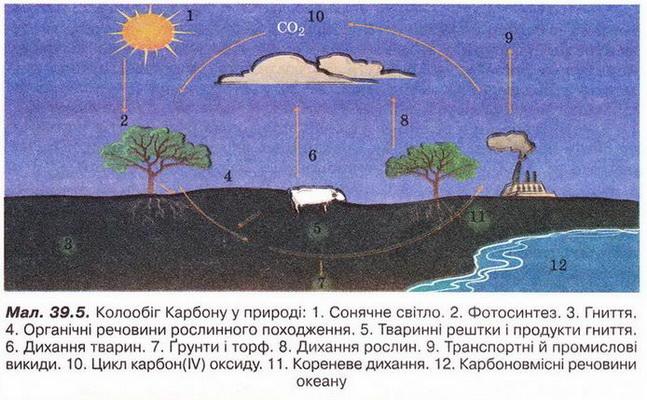 Значення хімічних процесів у природі