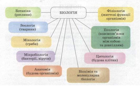 Різноманітність біологічних наук. фото