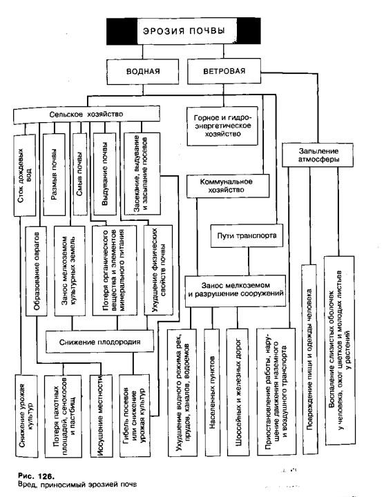 Схема плана дачного участка.