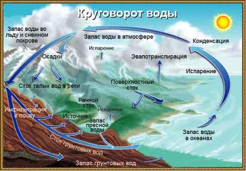 Круговорот воды в биосфере.