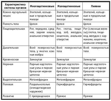 Характеристика класів Типу