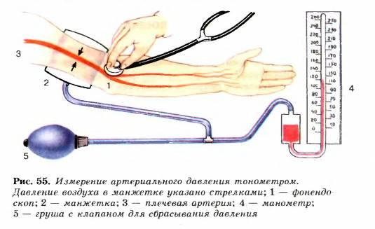 Измерение артериального