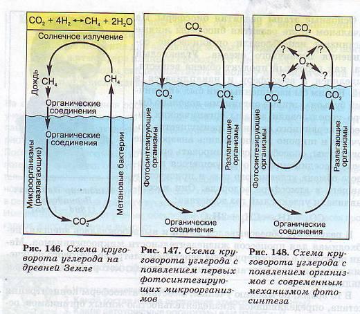 Схема круговорота