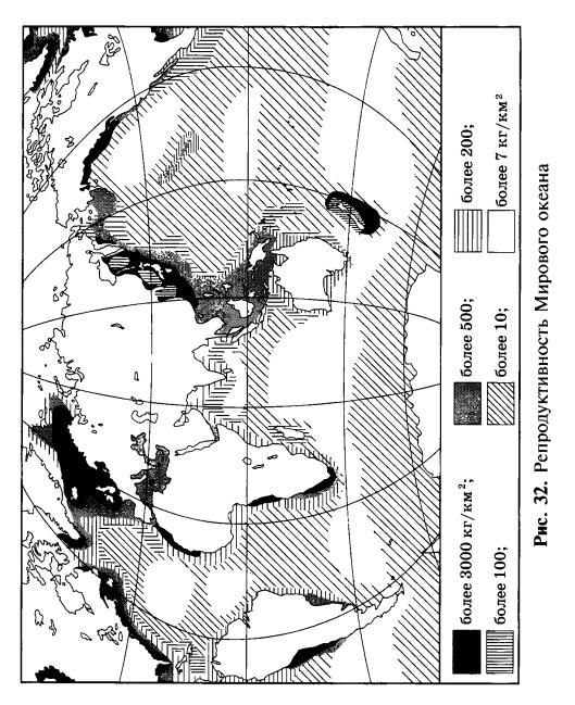 Репродуктивность Мирового океана