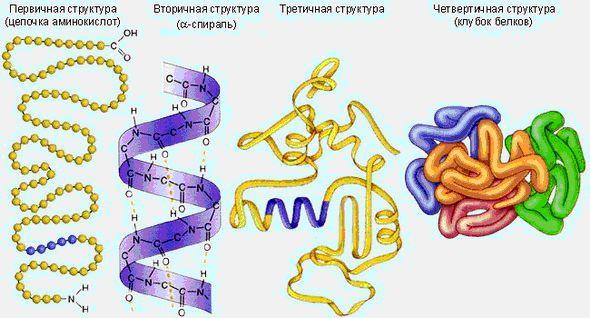 Химия и Химики  67 2010 Эксперименты с ацетиленом