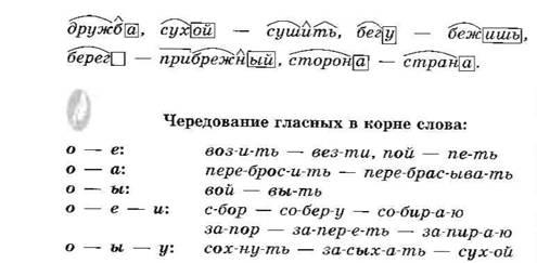 6 rus5 511.jpg