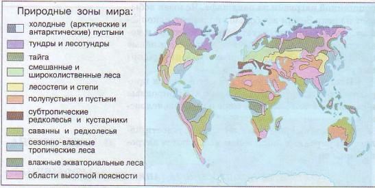 Природные зоны мира и России