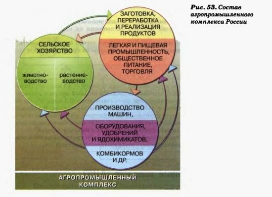 Состав агропромышленного комплекса России