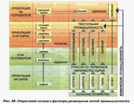 Отраслевой состав и факторы размещения легкой промышленности