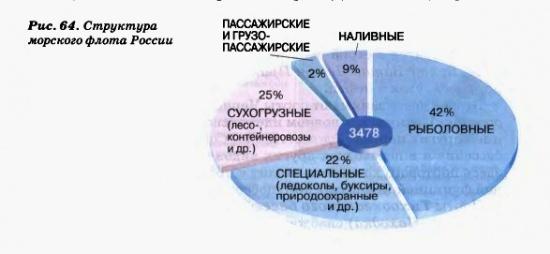 Структура морского флота России