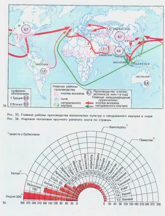 Главные районы производства