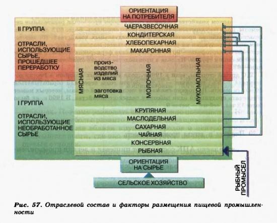 Отраслевой состав и факторы размещения пищевой промышленности