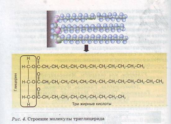 по общей биологии, схемы строения липидов.  Но хорошо растворимые в состав биологических мембран некоторые .