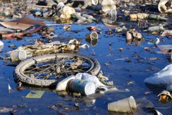"""Результат пошуку зображень за запитом """"забруднена водойма"""""""